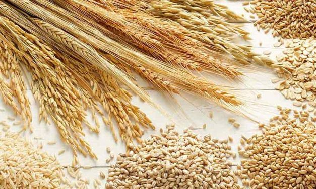 Healthy Super Whole Grains To Include In Your Diet